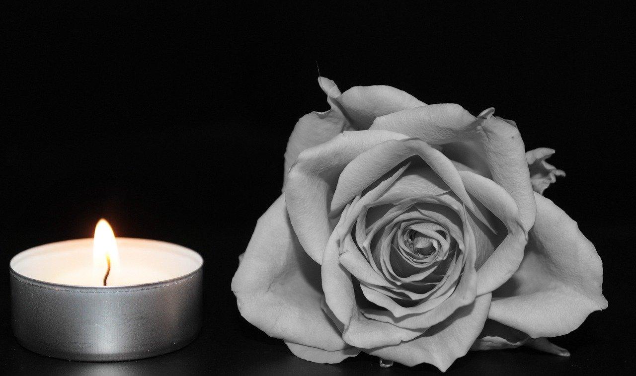Rose Teelicht